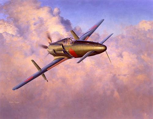 Принцип «Наоборот» в самолёте схемы «утка» полена